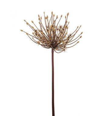 MP Allium 9757-70